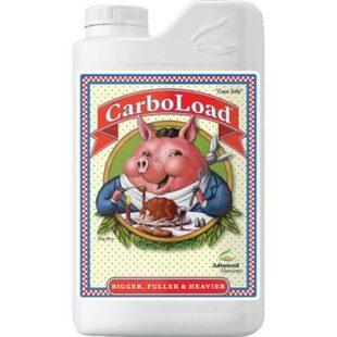 Advanced Carboload