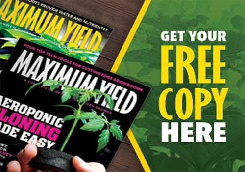 get-your-free-copy